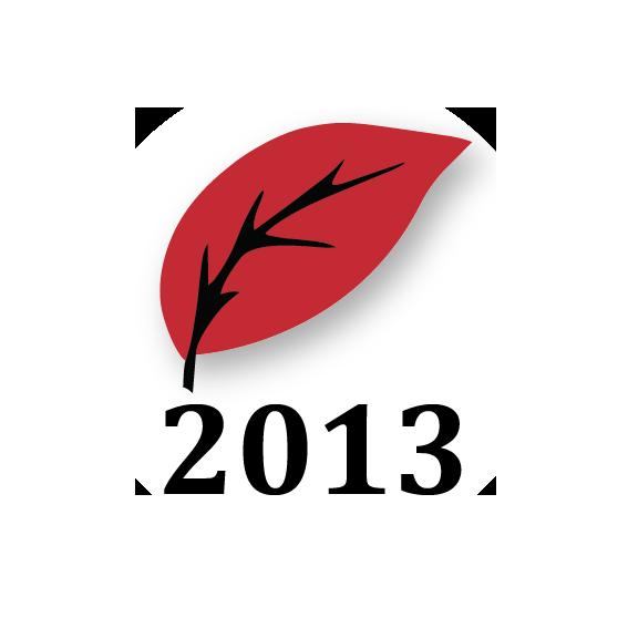 logo equipo 2013